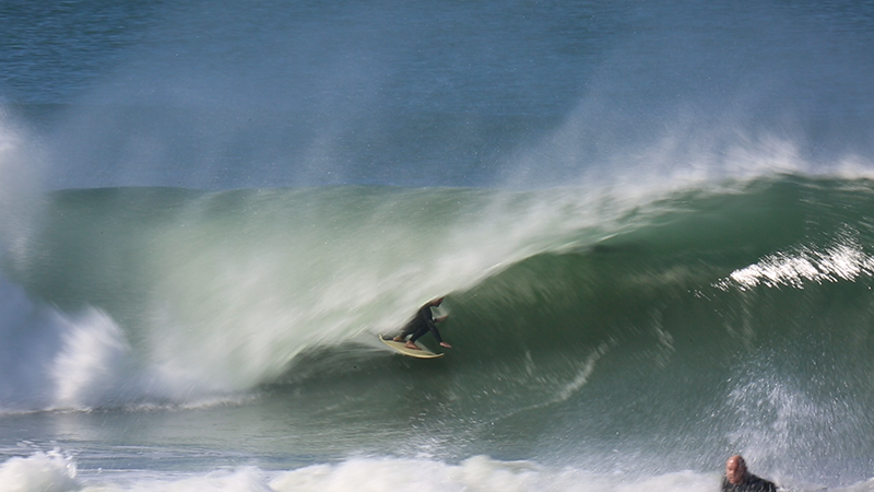 surfing north narrabeen